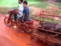 cambodia real life 3