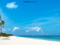 maledives 18