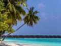 maledives 6