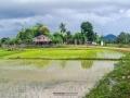 laos 96