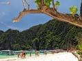 phi phi islands 16