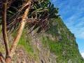 phi phi islands 30