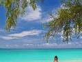 phi phi islands 37