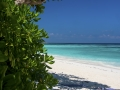 tachai island 5