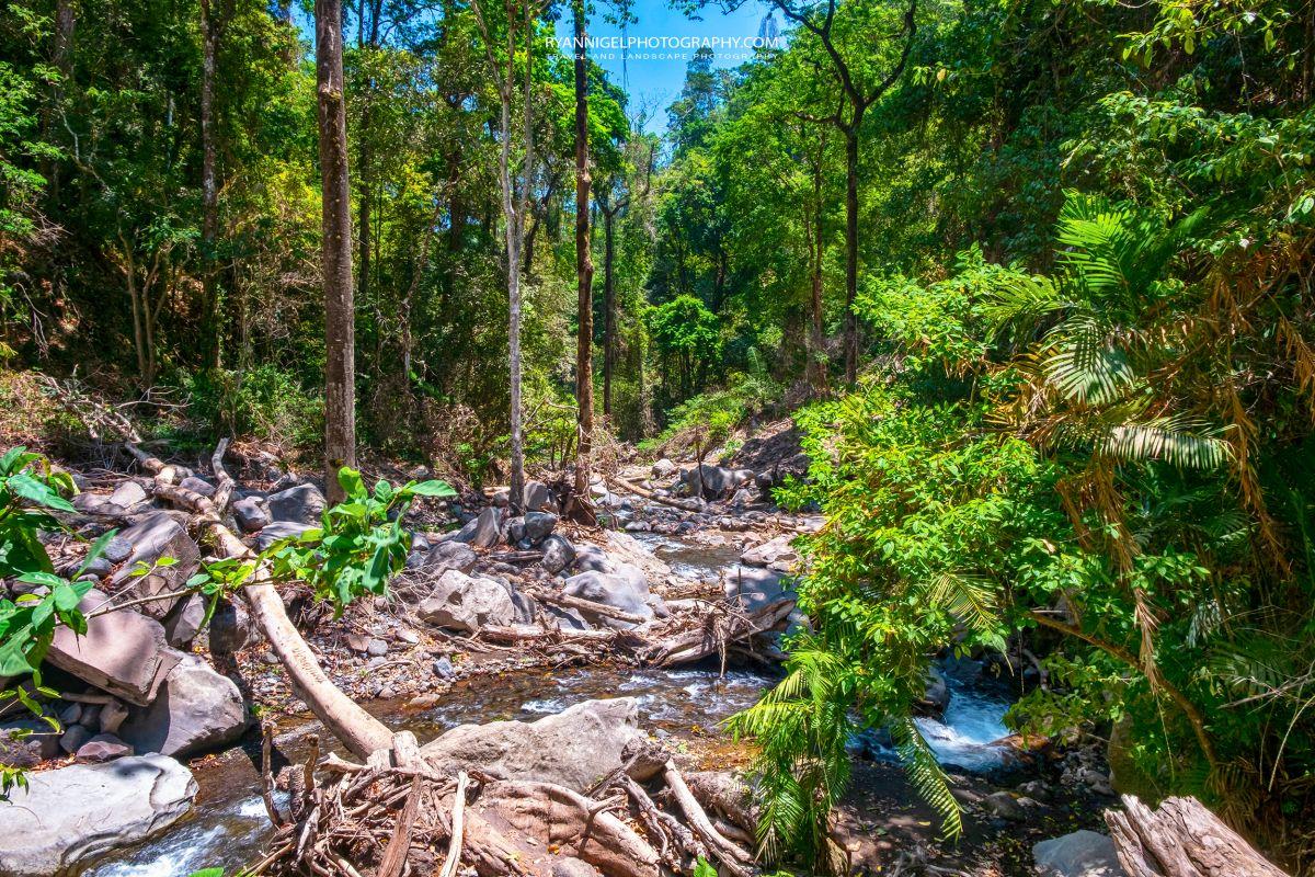 Jungle Trekking in Senaru North Lombok