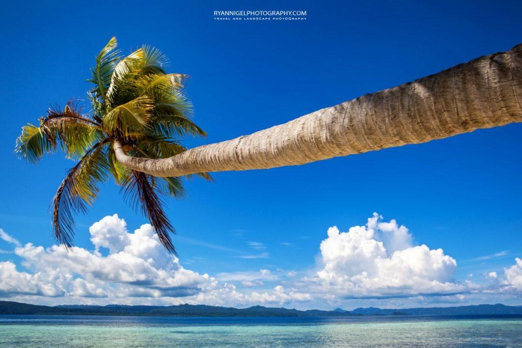mansuar island raja ampat