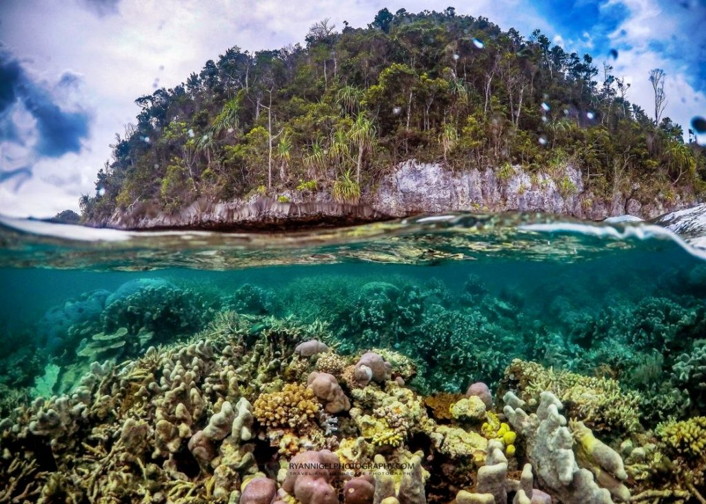 raja ampat fam islands 5