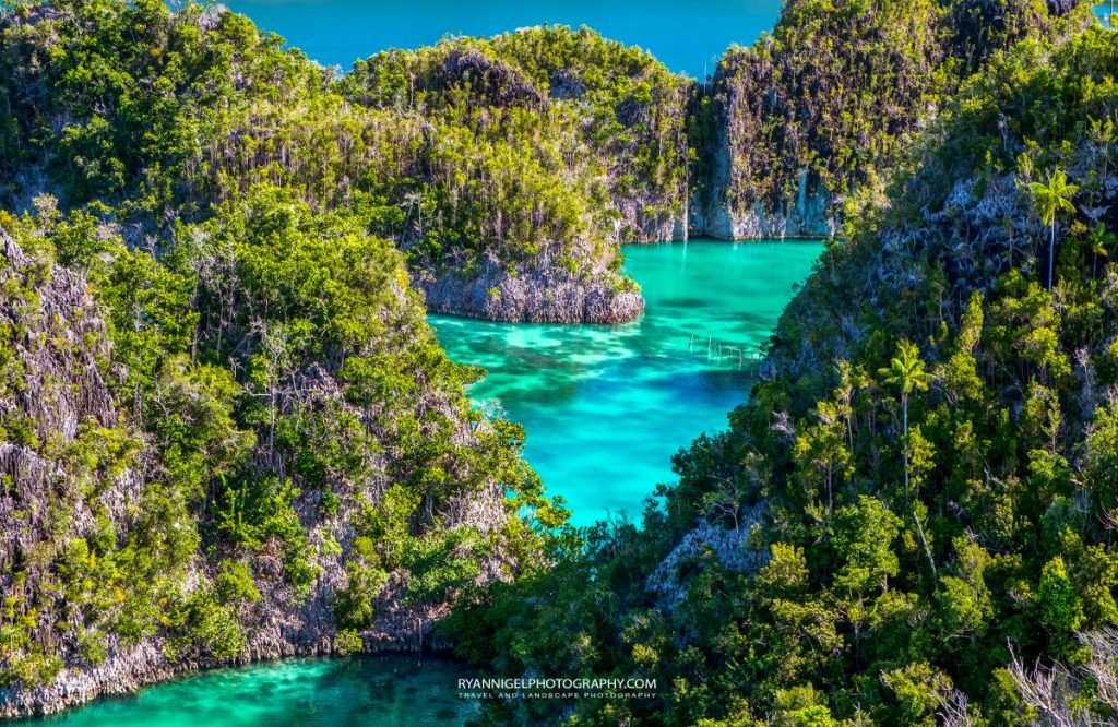 raja ampat fam islands 6