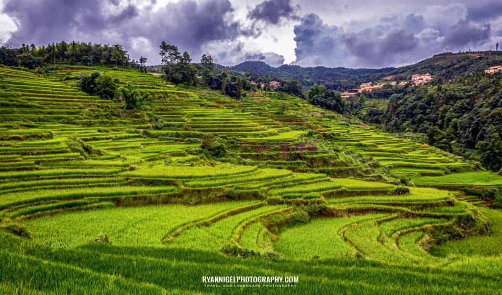 rice-fields-of-yuanyang_48660556543_oedit