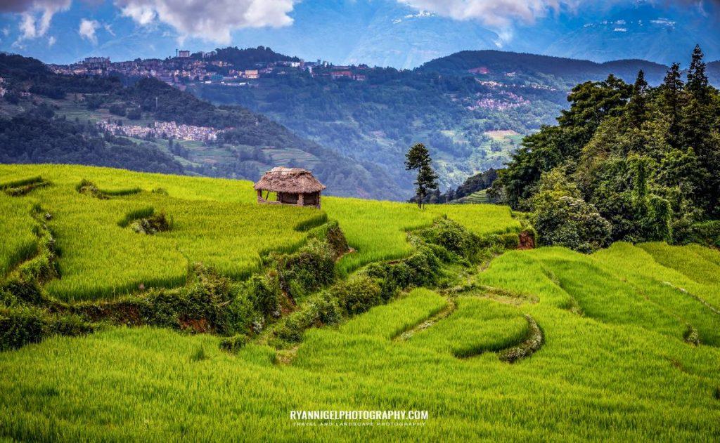 rice-fields-of-yuanyang_48660907311_oedit