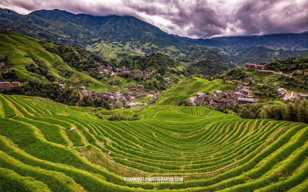 rice-terrace-of-longji_48660895876_oedit