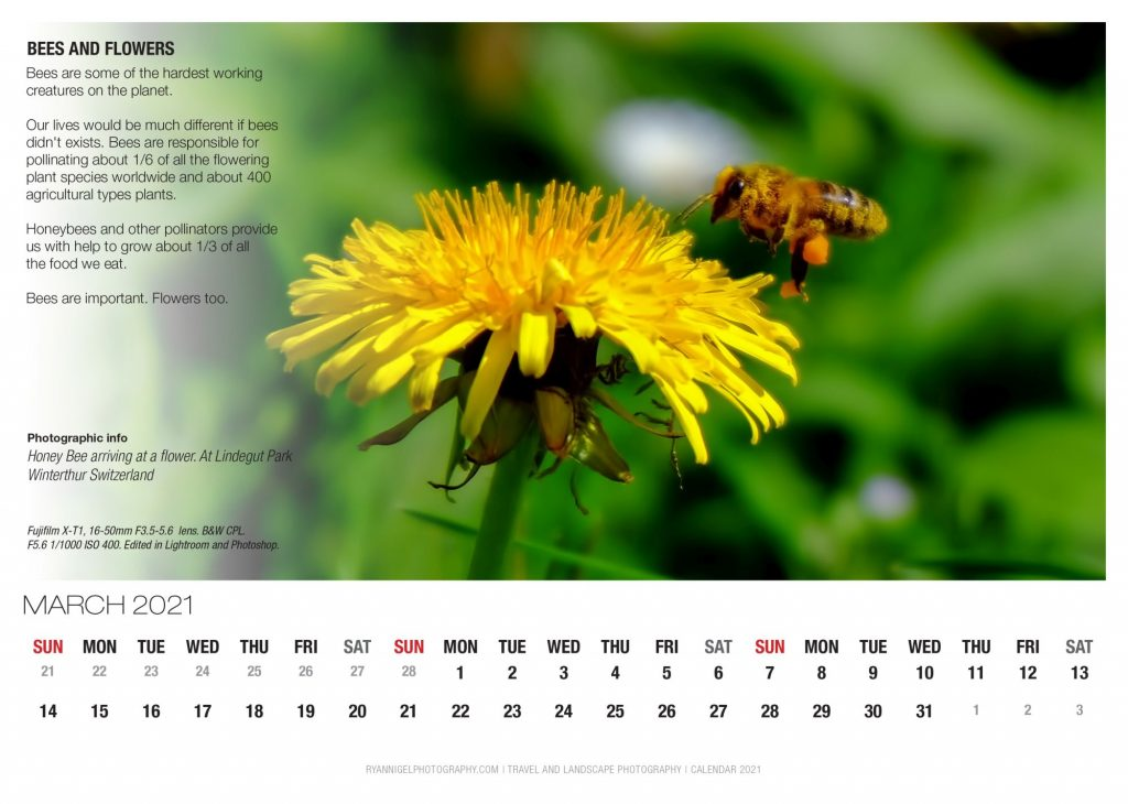 calendar 2021-4